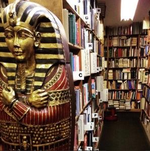 dawn treader bookstore
