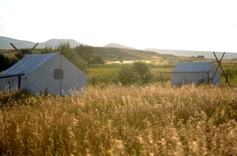 tents on farm
