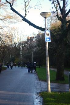 people walking in vondelpark