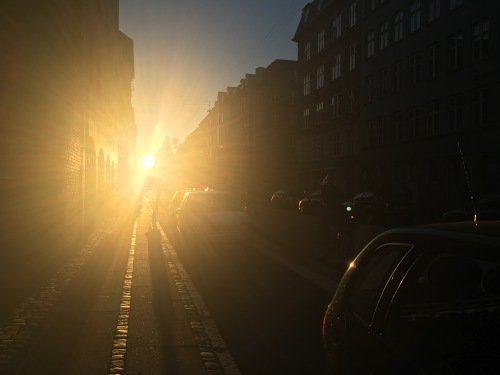 Copenhagen at sunset