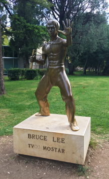 bruce lee small