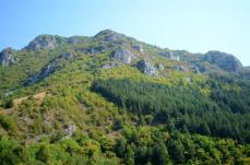 travnik 10 small